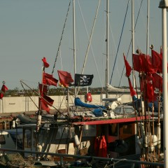 Jolly Rouge Ostsee