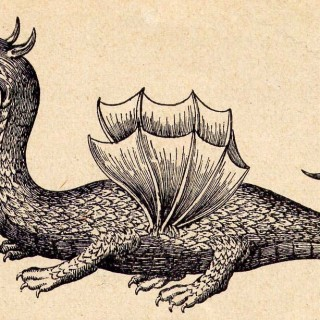 Kircher,_Athanasius_—_Mundus_Subterraneus_—_Winged_dragon_(on_the_ground)_—_1665